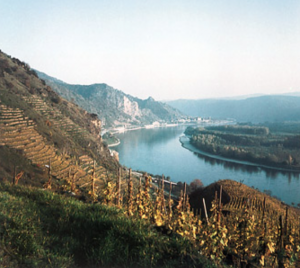 danube-river-in-fall